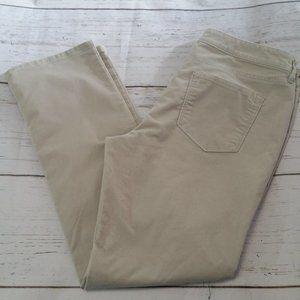 LOFT Soft Corduroy Modern Straight Leg Pants 14